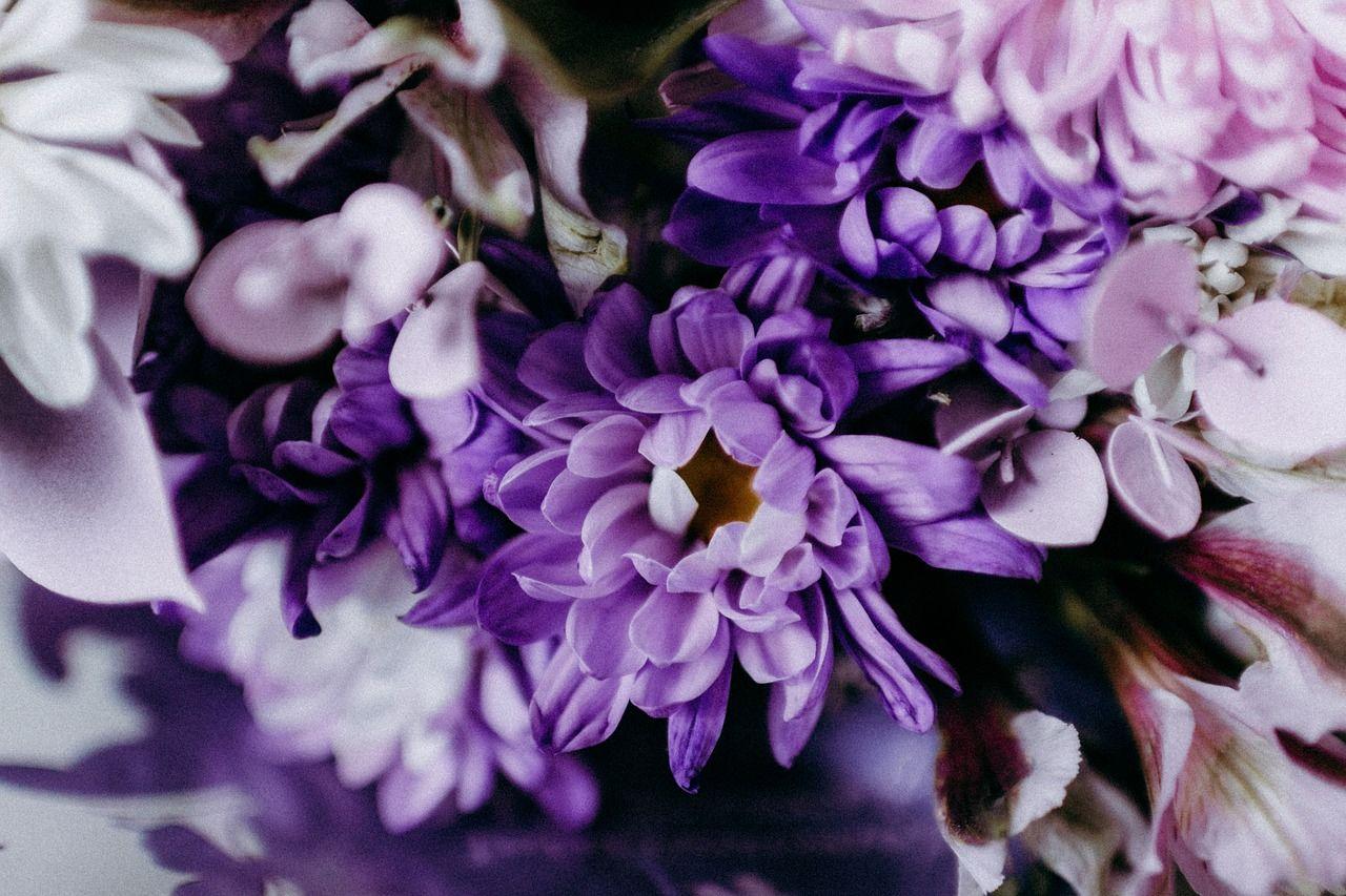 Kolor przewodni wesela fiolet – sprawdzi się nie tylko jesienią