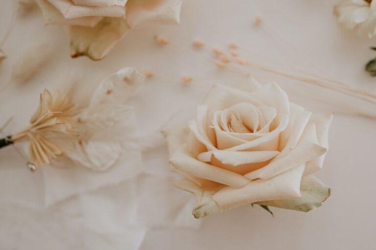 Dekoracja ogrodzenia na wesele  – jaką najlepiej wybrać?